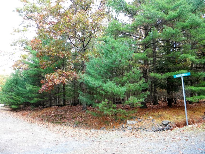 Arbutus Lane & Lot 4 Blueberry Paupack, PA 18451 - MLS #: 16-5008