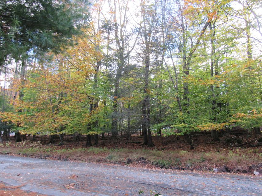 104 Oak and Hillside Dr Greentown, PA 18426 - MLS #: 17-4921