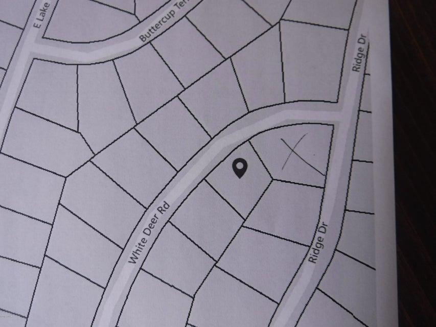21 Whitedeer Rd Milford, PA 18337 - MLS #: 16-186
