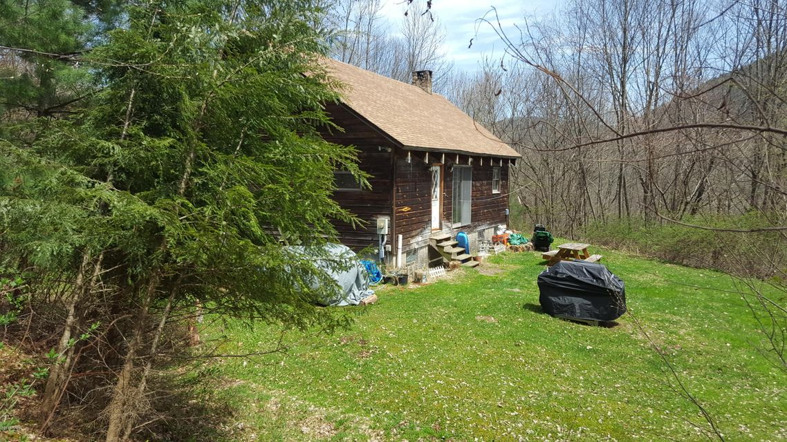 236 Cabin Rd East Branch, NY 13756 - MLS #: 18-645