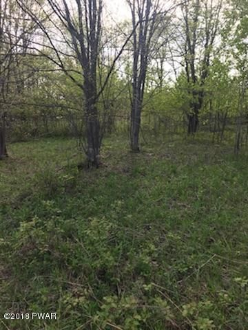 Lot 1 Curtis Pond Rd South Canaan, PA 18459 - MLS #: 18-2019