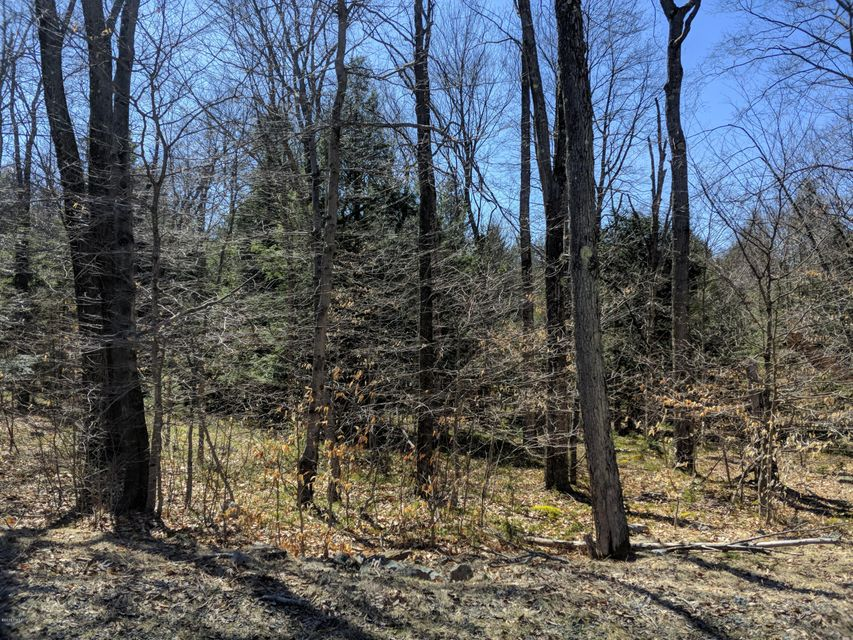 Lot 119 Hemlock Ct Gouldsboro, PA 18424 - MLS #: 18-2029