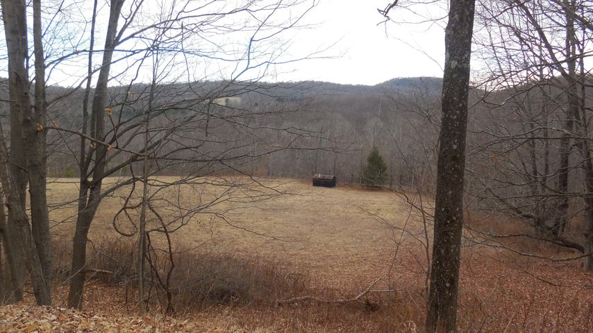 352 Hellmers Hill Rd, Equinunk, PA 18417