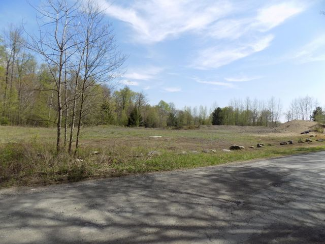 Old Schoolhouse Rd, Greentown, PA 18426