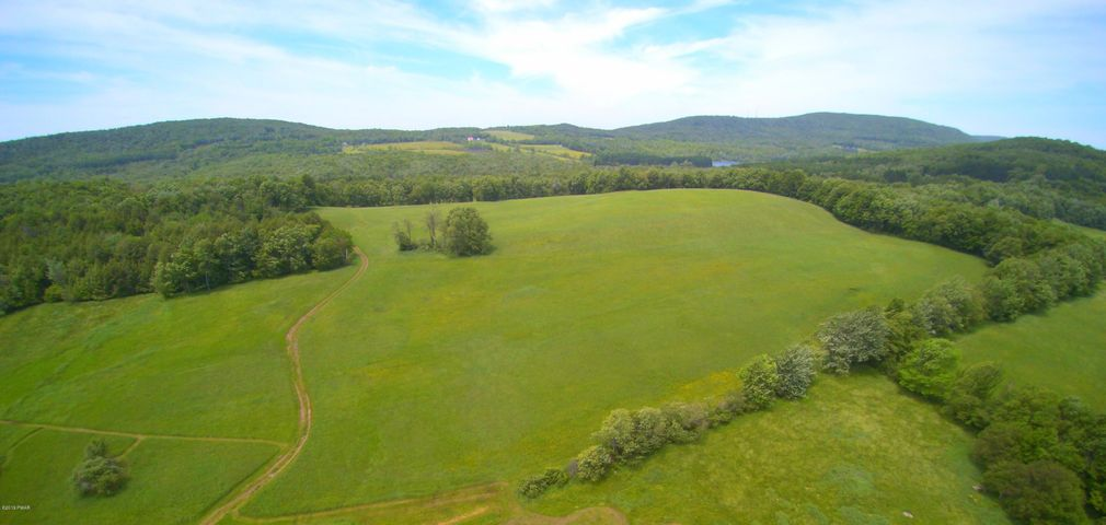 Lot D North Rd, Pleasant Mount, PA 18453