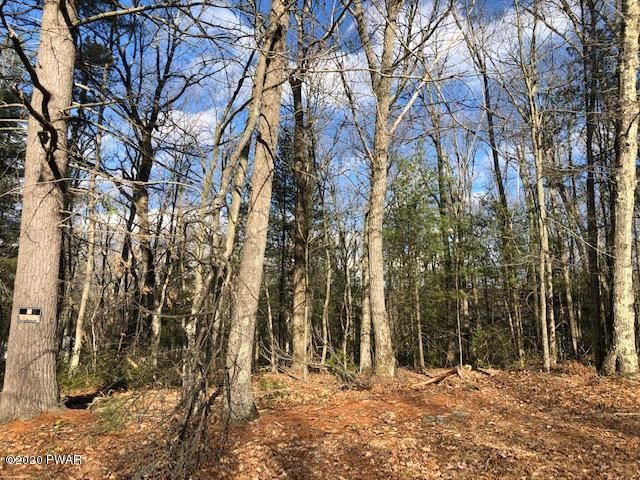Lot 55 Boundry Rd, Tafton, PA 18464