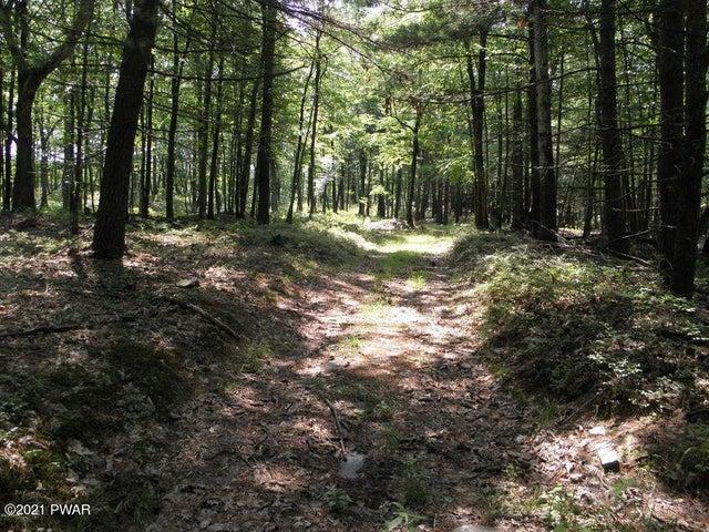Interior logging roads