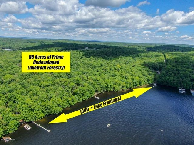56 Acres and 1300' of Lakefront!
