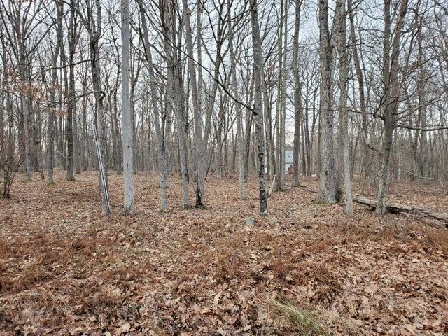 Lot 59 Deer Trail Dr