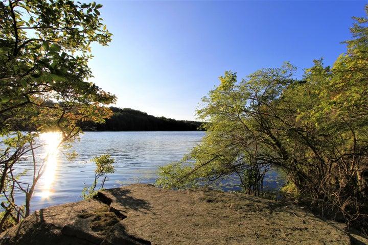 Wildwood Lake View