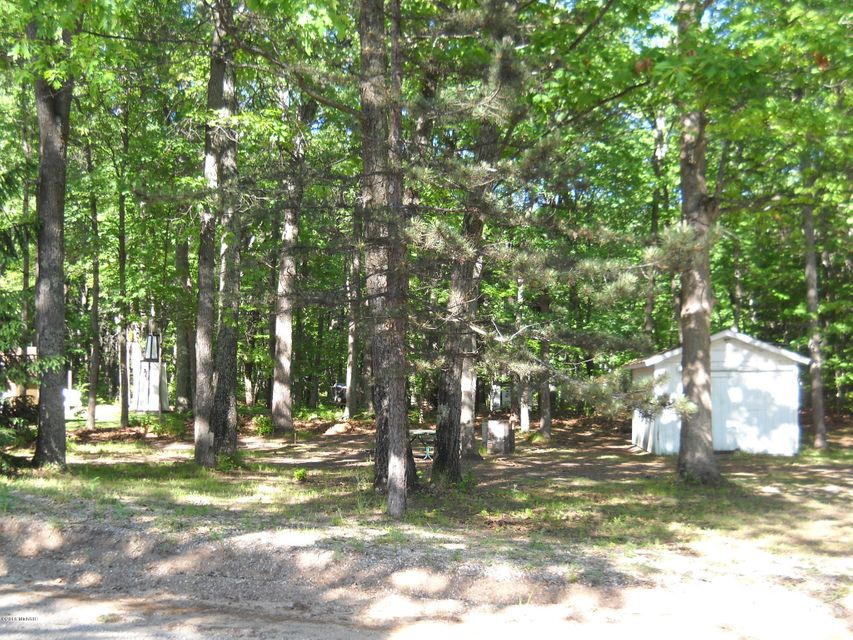 3 Lots abut National Forest Land