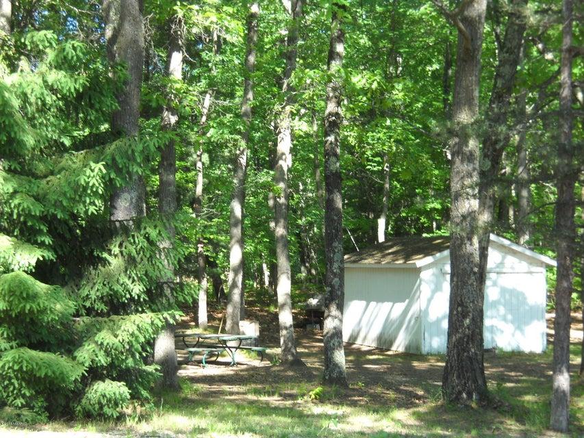 Storage barn & woods
