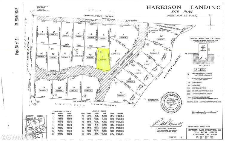 9 Site Destiny Drive, Hart, MI 49420 - Century 21 White