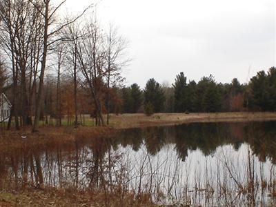 10724 Dobbyn Lane, Canadian Lakes, MI 49346