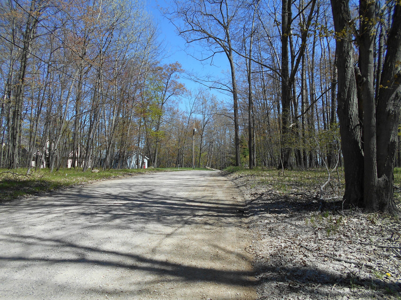 9565 Pere Marquette Drive, Canadian Lakes, MI 49346