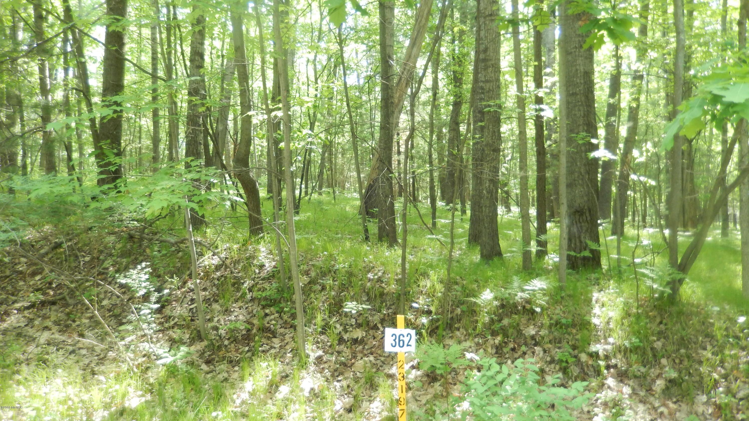 8278 Highland Trail, 362, Canadian Lakes, MI 49346