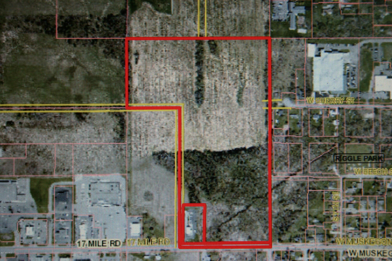 43.95 Acres in Cedar Springs