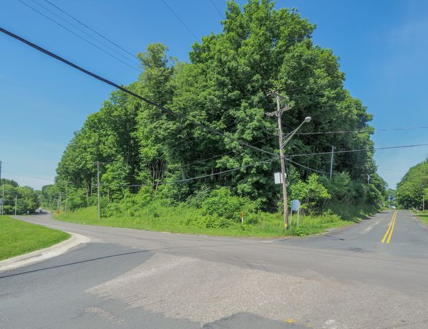 VL Douglas Avenue, Parchment, MI 49004