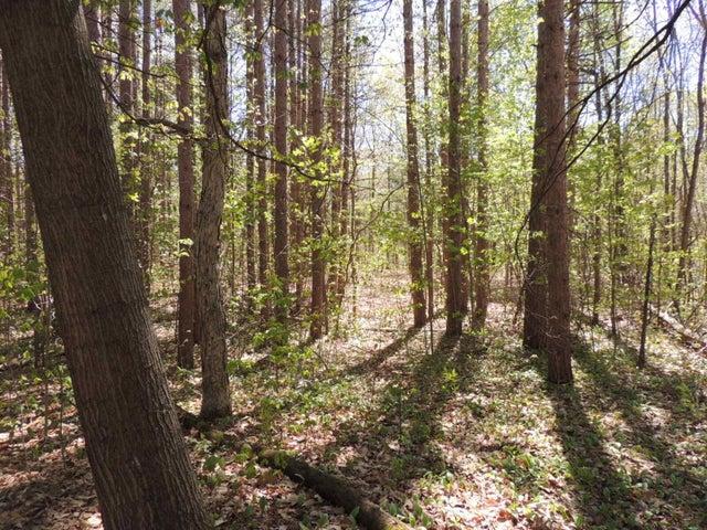 5818 Hunters Ridge, Fennville, MI 49408