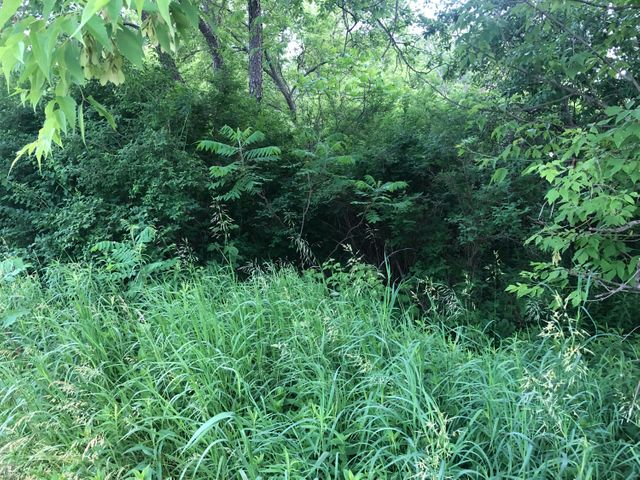 Land for sale in Morley, Michigan, 19027463