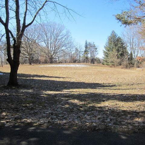 Building your dream home?  Here's the dream parcel!  Located on a paved road, this 5+ acre lot features many great advantages over other properties for sale nearby.  Peace and privacy are yours here with NO NEIGHBORS BEHIND and mature trees outlining the land.  The perc test and survey have already been done.  Natural gas and electricity are both available at the street.  There are NO ASSOCIATION FEES.  Also, this is no flat farm-land lot!  Gorgeous contours and sandy soil make this an outstanding place to build. Per township, there is no limit on horses (or other livestock) here and a large pole barn can be built as well. (refer to Blendon Twp.).  Zeeland or by school of choice, Allendale schools, too.  Don't let someone else buy your land! Please do not walk the land without an appointment.  Showings begin 3/7/2020 at NOON.