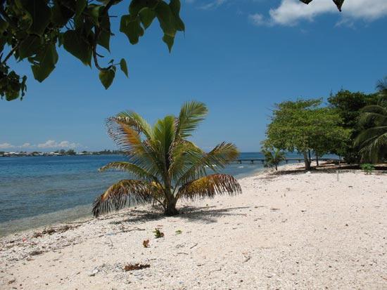 0.29 Acre Beachfront Lot on Utila South Shore