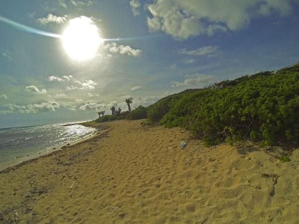 Stunning sandy beachfront property