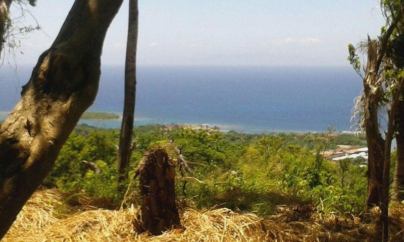 .288 Acre Lot, Brazil Hill, Infinite Ocean Views, Roatan,