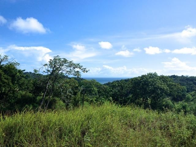 Multi Purp-Com or Res Bargain, Main Rd Frontage, Roatan,