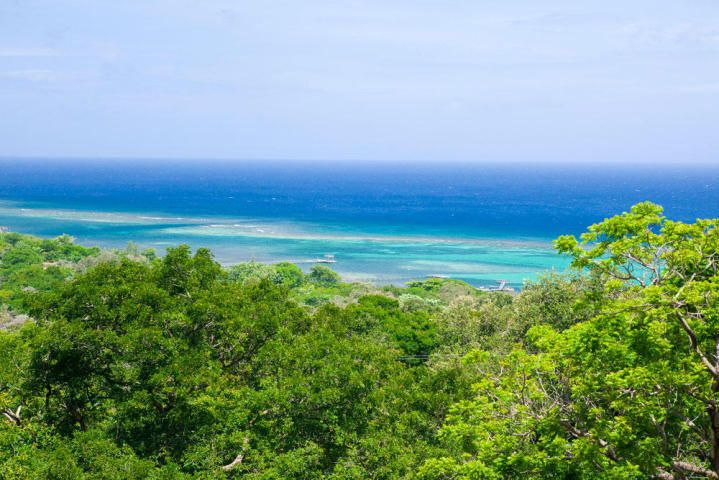 Wesley Heights, Wesley Heights Lot V-1, Roatan,