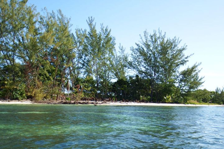 - Pine Point - West Shore, 0.92 Acre, Beachfront, Utila,
