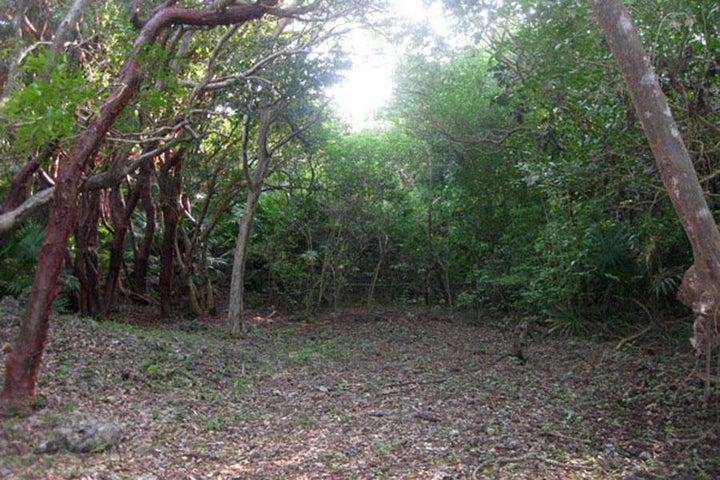 - Swanix Ridge - Inland, 5.38 Acre, Gumbo Limbo Finca, Utila,