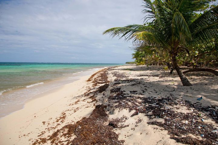acres for $39,000 Great View, Close to This Beach, .699, Roatan,