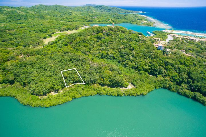 Parrot Tree Oceanview Lot 69, Roatan,