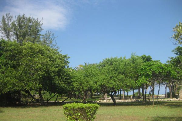 - Trade Winds - East Shore, 0.254 Acre, Oceanview, Utila,