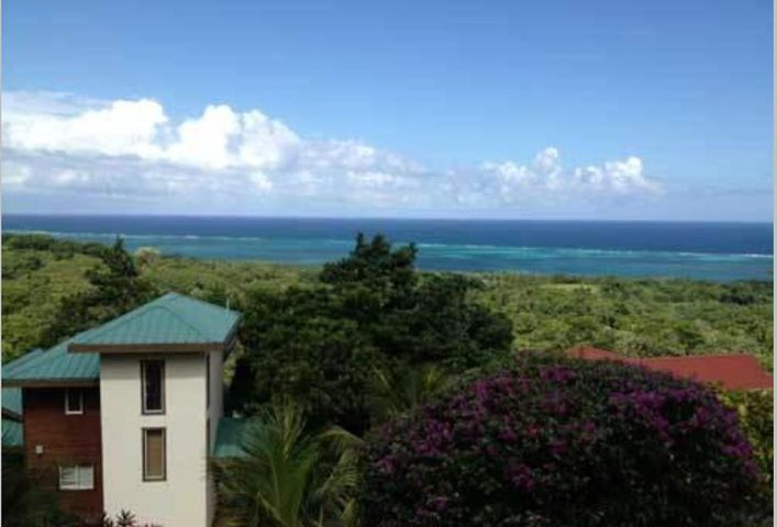 Palmetto Bay Beach Area, Turtling Bay #44, Roatan,
