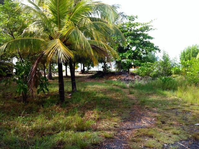 Value priced at only 59,000, 150 steps to the Beach!, Roatan,