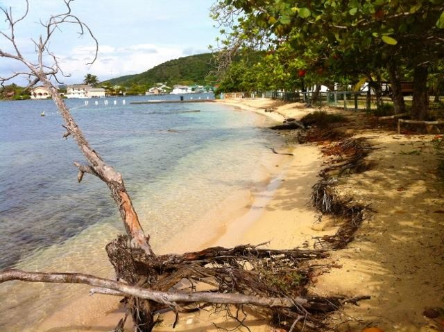 Right on the Beach 119,000 #2, Beachfront Value!, Roatan,