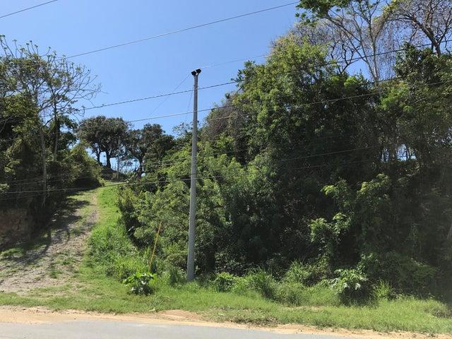 0.42 Acre Roadfront Lot, Roatan,