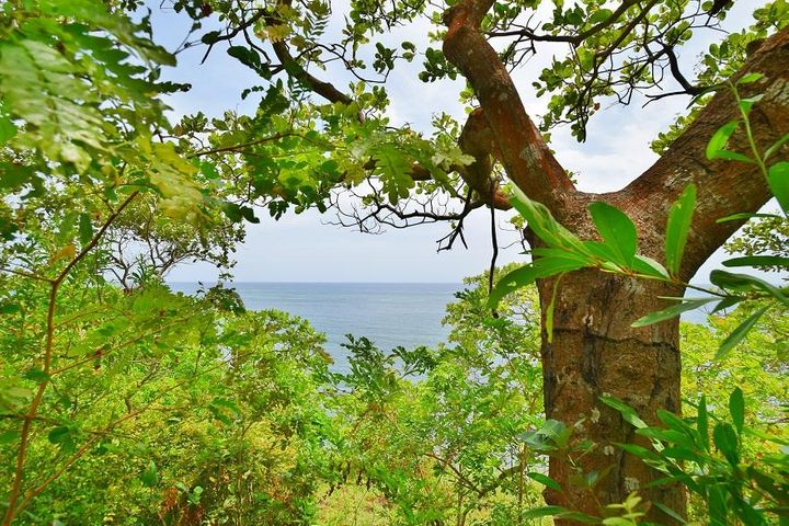 Camp Bay, Water Front Bluff, Roatan,