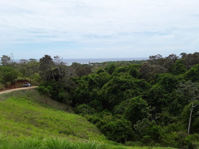 20170616171713024475000000-o 1.38 Acres Hottest Sparrow, Eye Candy Views, Roatan, (MLS# 17-224)