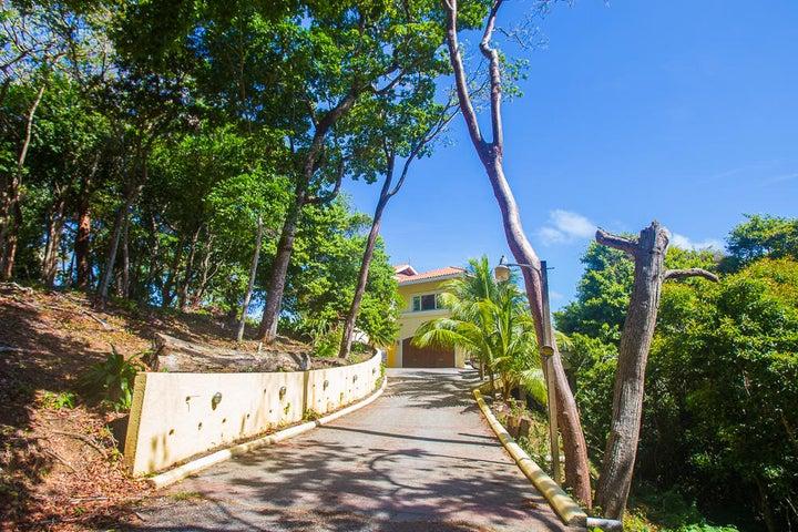Drive Way to Villa Delfin