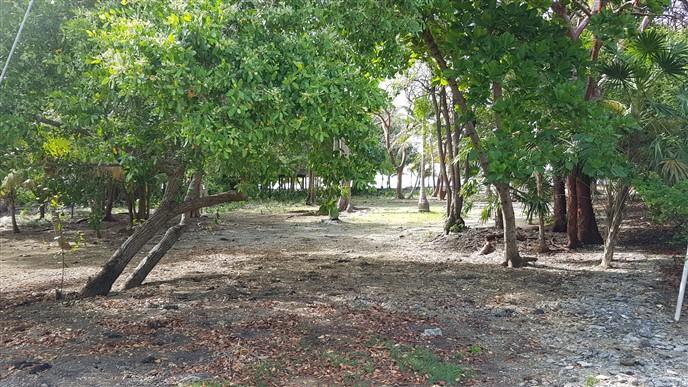 Coconut Cove, Silver Garden Lot with Boat Sl, Utila,