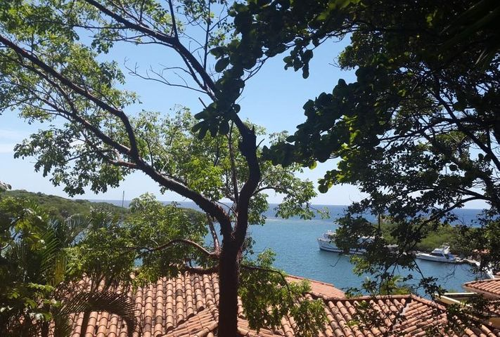Parrot Tree, Hillside Lot # 133, Roatan,