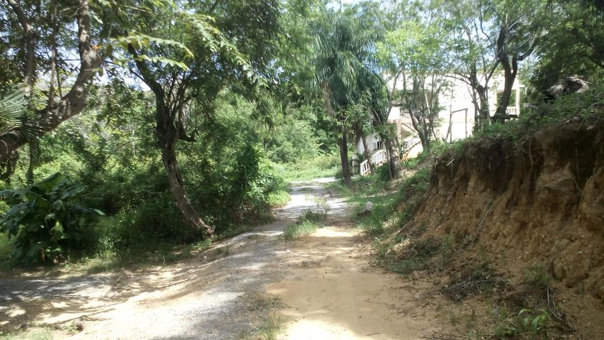 Main road, Sandy Bay, Whaletail Lot #5, 363 SM, Roatan,