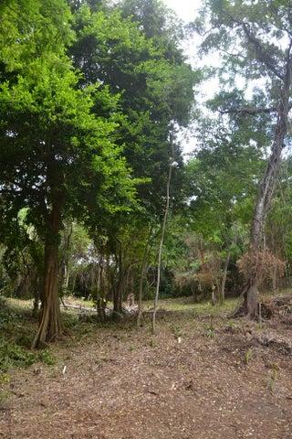 Madganzuni Rd, Mangrove Bight, Land .233 acres, Roatan,