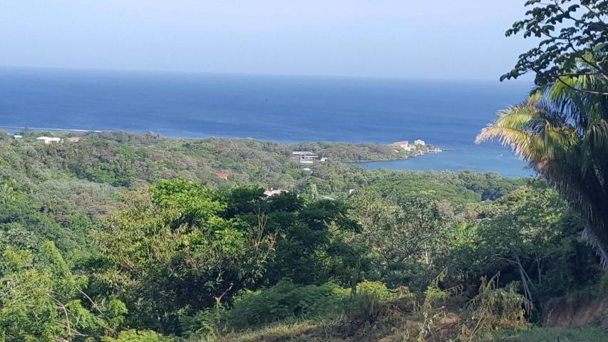 Gibson Bight, Ocean view lot 2, Roatan,