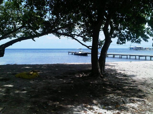 1 Bed 1 Bath Cottage, Helene, 4 Acres w/200 Ft Beach, Roatan,