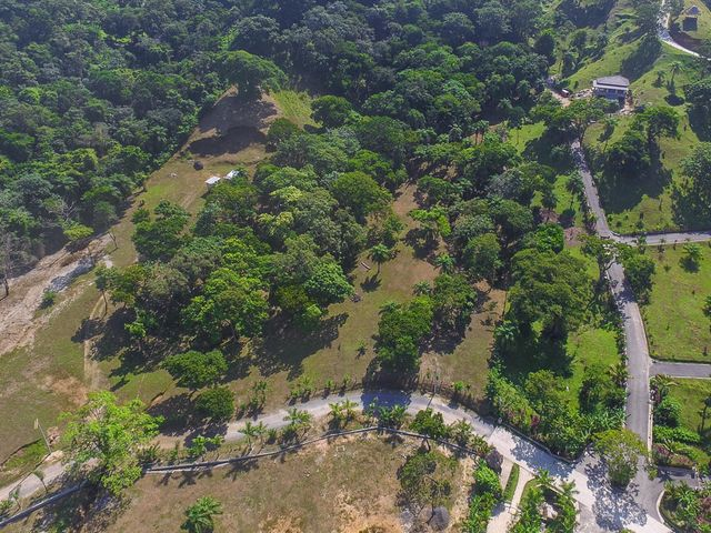 Aerial view of the hillside lots at Guaiabara Beach