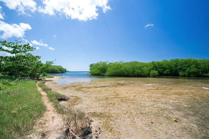 Beach frontage and view of a little cay infant of the property